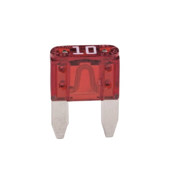 Car Blade Fuse - 10 Amp - Pack of 2_Sharvielectronics